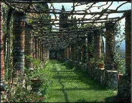 History of Pergolas | GazeboCreations.
